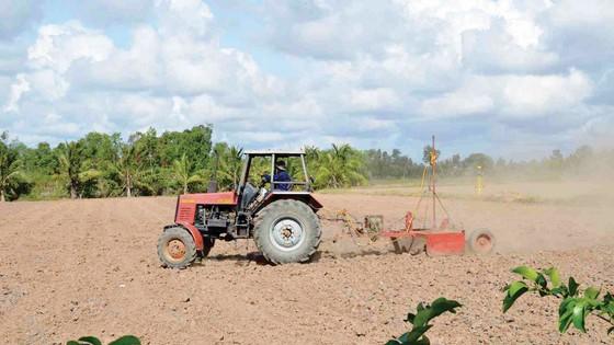 Châu thổ Cửu Long: Kỳ vọng nông nghiệp số ảnh 3