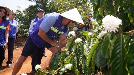 NutiFood bắt tay Greg Norman đưa cà phê Việt xuất khẩu ảnh 3