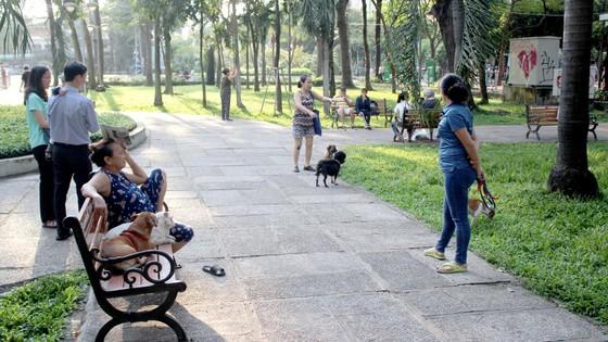 Quản lý chặt việc nuôi chó trong khu dân cư ảnh 1