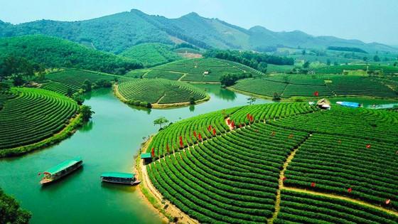 Saigontourist hỗ trợ phát triển sâu rộng du lịch Nghệ An ảnh 3