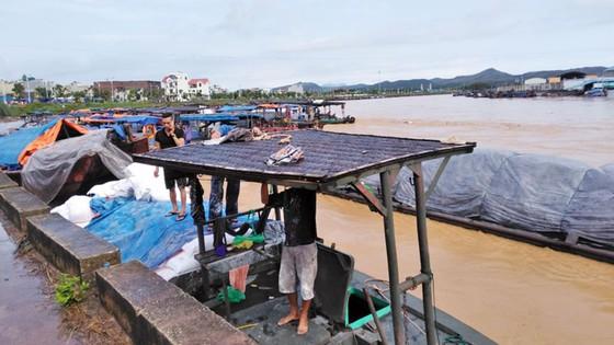 Quảng Ninh mưa to, nguy cơ cao sạt lở đất tại thành phố Móng Cái ảnh 1