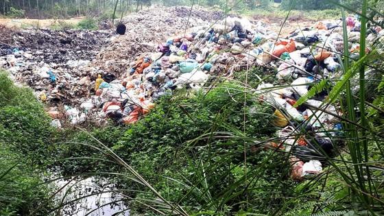 Bãi rác gây khổ cho người dân ảnh 1