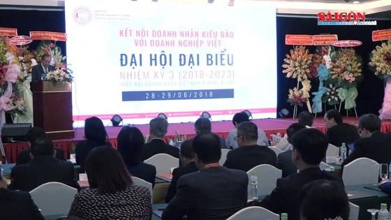 Doanh nhân Việt kiều là nguồn lực to lớn trong phát triển kinh tế ảnh 1