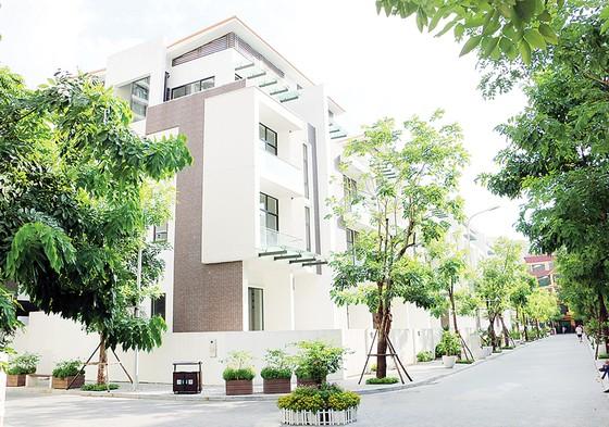 """Mãn nhãn với không gian sống xanh  tại """"khu phố nhà giàu"""" ở Hà Nội ảnh 2"""