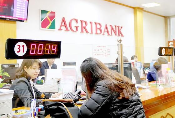 Phá sản tổ chức tín dụng - vẫn đảm bảo quyền lợi người gửi tiền ảnh 1