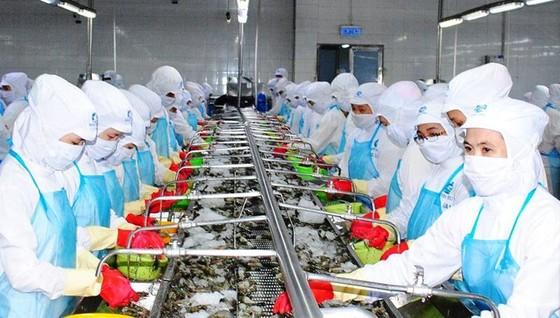 Xuất khẩu thủy sản:  Hướng tới mục tiêu 10 tỷ USD ảnh 2