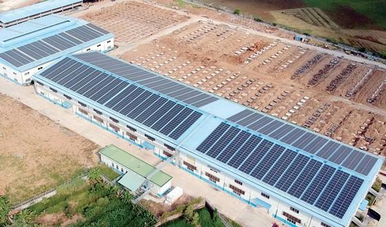 Điện mặt trời trên mái nhà:  Điện lực có trách nhiệm kiểm tra, giám sát vận hành ảnh 1