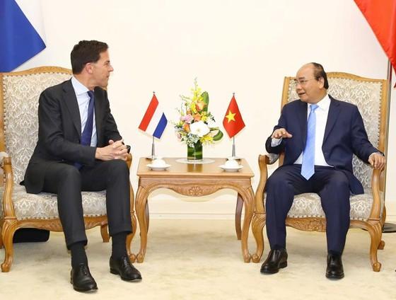Nâng cấp quan hệ Việt Nam - Hà Lan lên Đối tác toàn diện ảnh 1