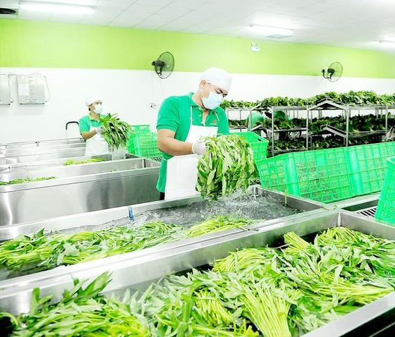 Kết nối chuỗi sản xuất - tiêu dùng thực phẩm sạch ảnh 1