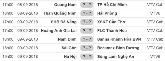 Lịch thi đấu vòng 21 Nuti Cafe V.League 2018: Hoàng Anh Gia Lai tiếp FLC Thanh Hóa ảnh 1