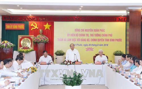 Bình Phước cần tập trung xây dựng vùng nông nghiệp công nghệ cao ảnh 2