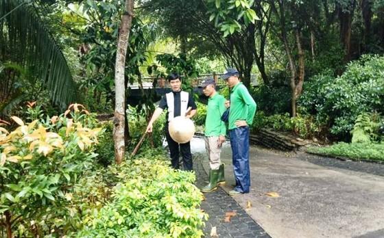 """Những nỗ lực xanh ở """"Khu nghỉ dưỡng thân thiện với môi trường nhất châu Á 2018"""" ảnh 3"""