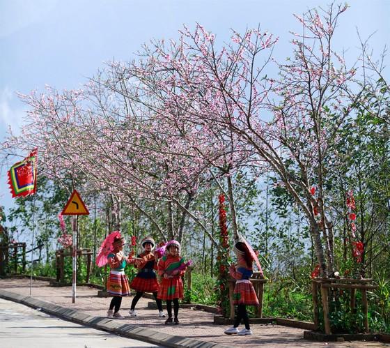 Khai hội xuân mở cổng trời Fansipan, du khách nô nức về chiêm bái xá lợi Phật trên đỉnh thiêng ảnh 12