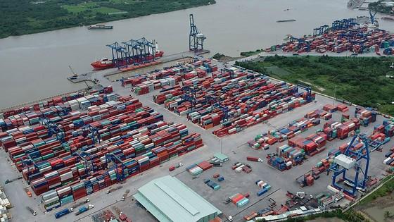 Điều tiết luồng hàng ở khu vực cảng biển Cát Lái ảnh 1