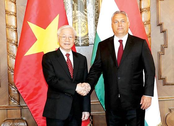Nâng quan hệ Việt Nam - Hungary lên mức Đối tác toàn diện ảnh 1
