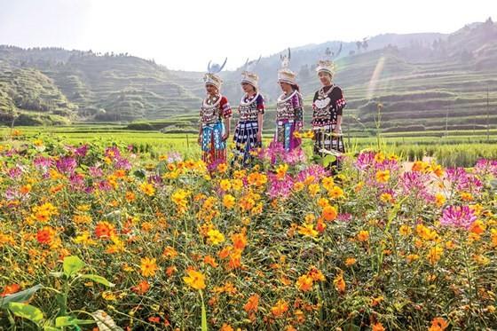 Độc đáo miêu làng Tây Giang Trung Quốc ảnh 2