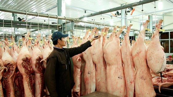 Chợ đầu mối Bình Điền: Kiểm soát chặt chất lượng thịt các loại ảnh 2