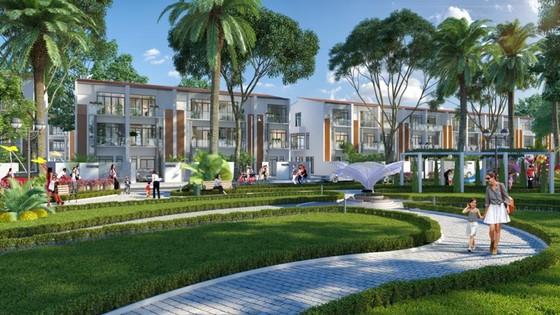 Chán đô thị, các nhà đầu tư đổ xô mua đất ven biển? ảnh 1
