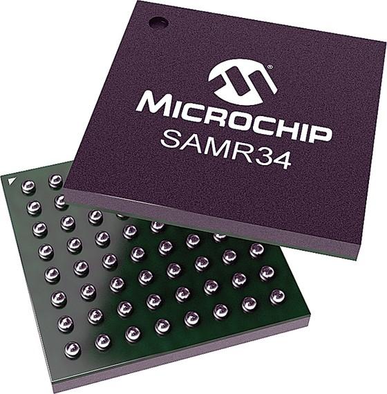 Đẩy mạnh phát triển các nút mạng IoT từ xa với dòng vi mạch hệ thống của Microchip ảnh 1