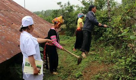 Phòng, chống sốt rét ở Việt Nam: Còn nhiều thách thức  ảnh 1