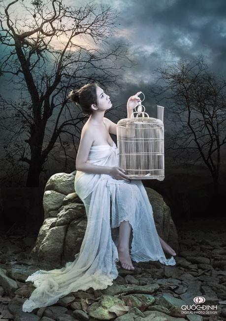 """Khát Khao """"Chim Sổ Lồng"""" Ảnh 3"""