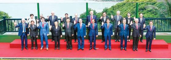APEC 2017: Nâng tầm vị thế Việt Nam ảnh 1