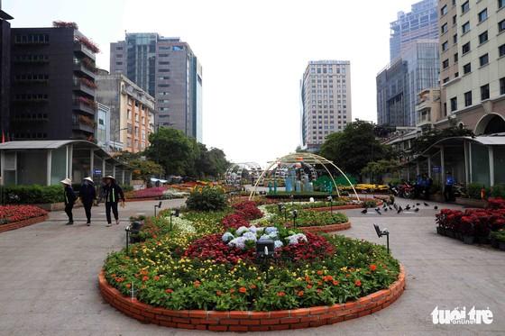 Chó Phú Quốc nổi bật ở đường hoa Nguyễn Huệ - Ảnh 22.