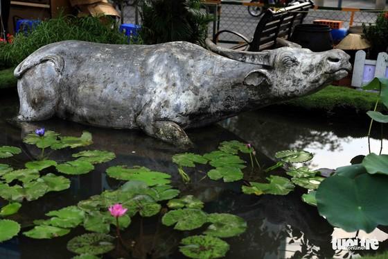 Chó Phú Quốc nổi bật ở đường hoa Nguyễn Huệ - Ảnh 26.