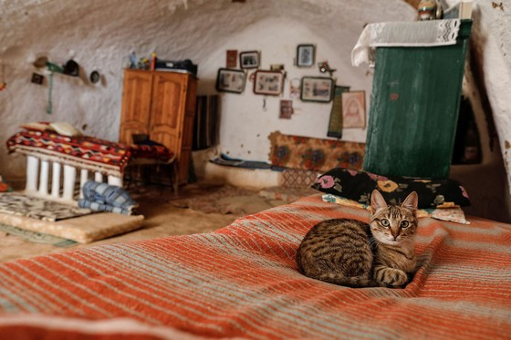 Những gia đình cuối cùng sống dưới lòng đất ở Tunisia - Ảnh 4.