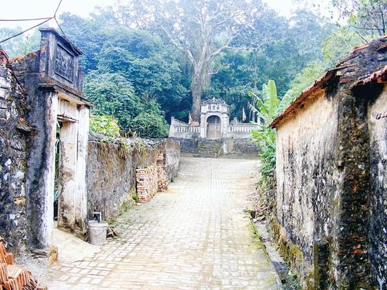 Hoang tàn làng cổ Đông Sơn ảnh 1