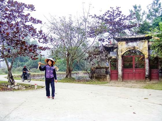 Hoang tàn làng cổ Đông Sơn ảnh 4