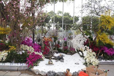 Hàng nghìn cành hoa đã sẵn sàng khoe sắc tại Lễ hội hoa anh đào 2018 - ảnh 4