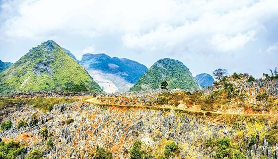 Cao nguyên đá tai mèo ở Điện Biên ảnh 4
