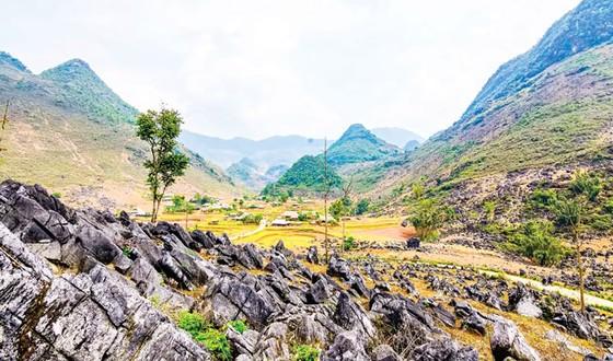 Cao nguyên đá tai mèo ở Điện Biên ảnh 6