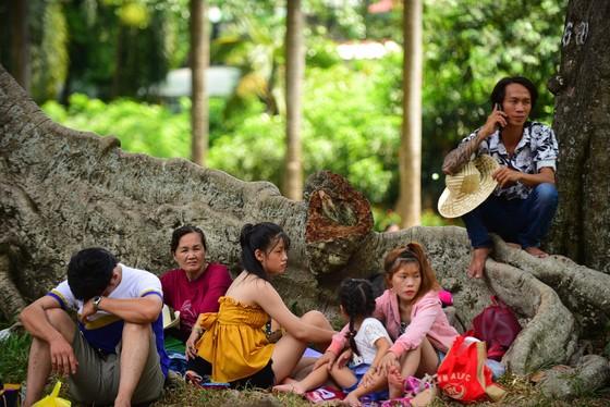 Người Sài Gòn mắc võng trốn nắng ở Thảo cầm viên - Ảnh 8.