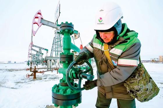 Nỗi lo cú sốc nguồn cung dầu ảnh 1
