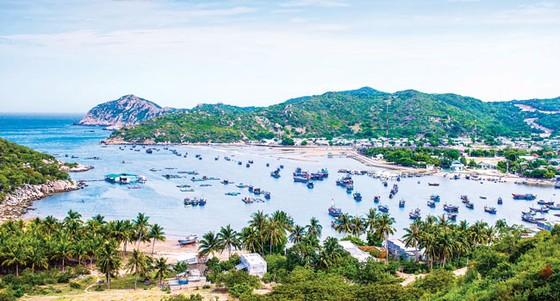 Tuyệt cảnh bờ biển Nam Trung Bộ ảnh 2