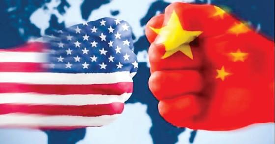 Kỳ 2: Vai trò của WTO? ảnh 1