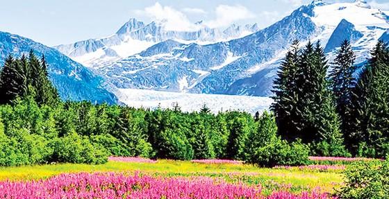 Alaska kho báu nước Mỹ ảnh 3