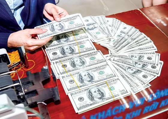 Rủi ro tín dụng ngoại tệ ảnh 1