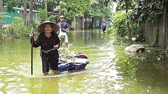 Nước lũ sông Bùi gây ngập nhà dân ở Chương Mỹ hơn 10 ngày qua