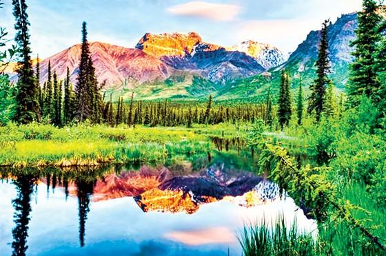 Hành trình khám phá Alaska ảnh 1