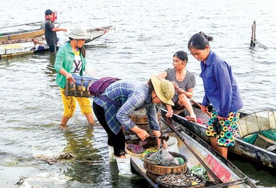 Nhẹ nhàng  Chợ nổi  trên phá Tam Giang ảnh 4