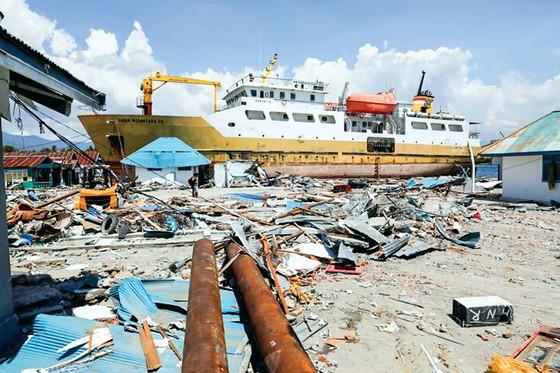 Indonesia tan hoang sau động đất - sóng thần ảnh 7