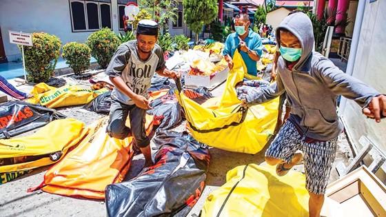 Indonesia tan hoang sau động đất - sóng thần ảnh 10