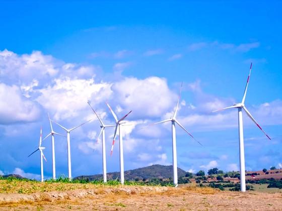 Điện gió - Ì ạch khai phá tiềm năng ảnh 1