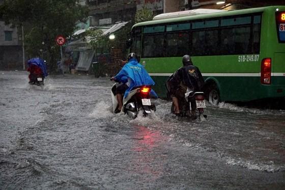 TPHCM mưa lớn, cây xanh bật gốc ngã đè người đi đường tử vong ảnh 6