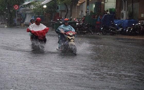 TPHCM mưa lớn, cây xanh bật gốc ngã đè người đi đường tử vong ảnh 7