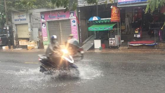 TPHCM mưa lớn, cây xanh bật gốc ngã đè người đi đường tử vong ảnh 13