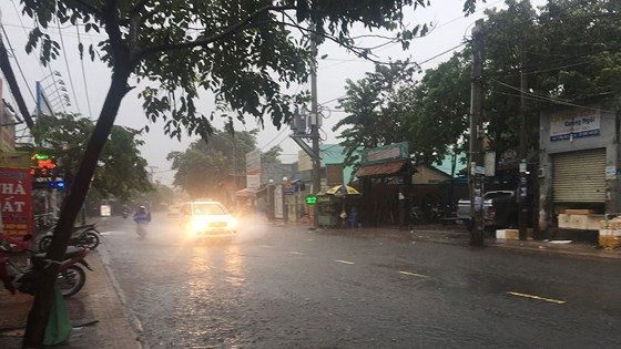 TPHCM mưa lớn, cây xanh bật gốc ngã đè người đi đường tử vong ảnh 15